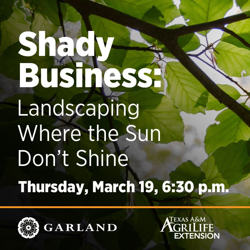 Shady Business: Landscaping Where the Sun Don't Shine | Thursday, March 19, 6:30 p.m. | City of G